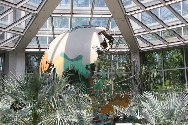 Eine Weldkugel im Tropicarium im Palmengarten Frankfurt