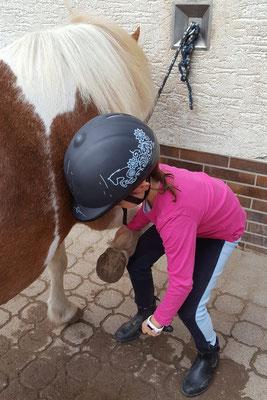 Unsere Große putzt ihr Pony beim Pony-Club auf dem Hessenwaldhof