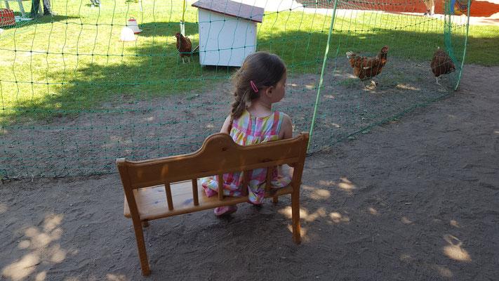 Unsere Kleine beobachtet die Hühner von rent-a-huhn
