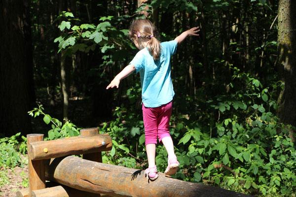 Unsere Kleine balanciert auf einem Baumstamm am Braunshardter Tännchen