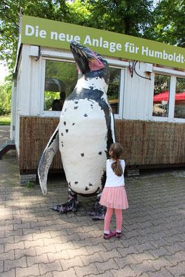 Impressionen aus dem Frankfurter Zoo