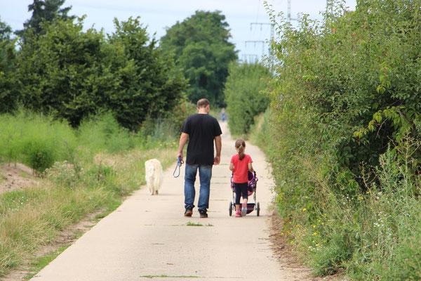 Unsere Kleine, Stefan und unser Hund Balou auf dem Weg zur Pferdekoppel
