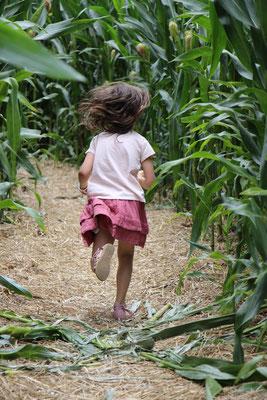 Unsere Große im Maislabyrinth auf dem Erdbeerhof Münch in Groß-Umstadt