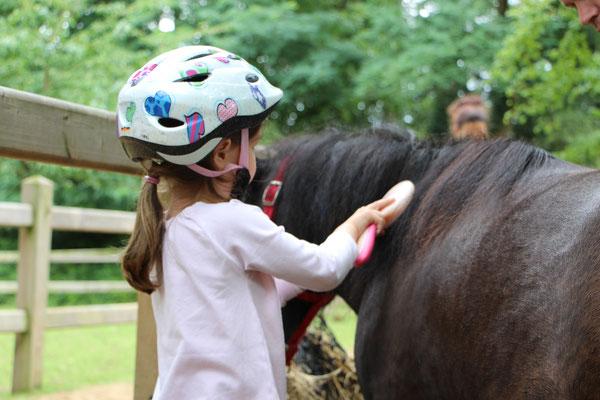 Unsere Kleine striegelt unser Pony Nina im CenterParc Erperheide