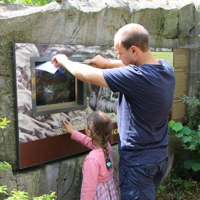 Stefan und unsere Kleine schauen sich ein Bärengeburt-Video an im Zoo Frankfurt