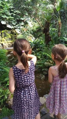 Unsere Mädels im Palmenhaus im Palmengarten Frankfurt