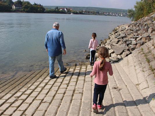 An der Fähre in Oppenheim am Rhein