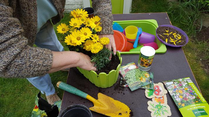 Unsere Oma bepflanzt Blumenkörbchen für die Mädels auf der Matschküche
