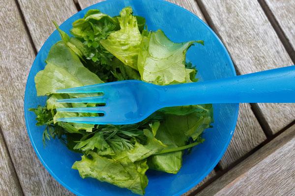 Ein Salat aus der Matschküche