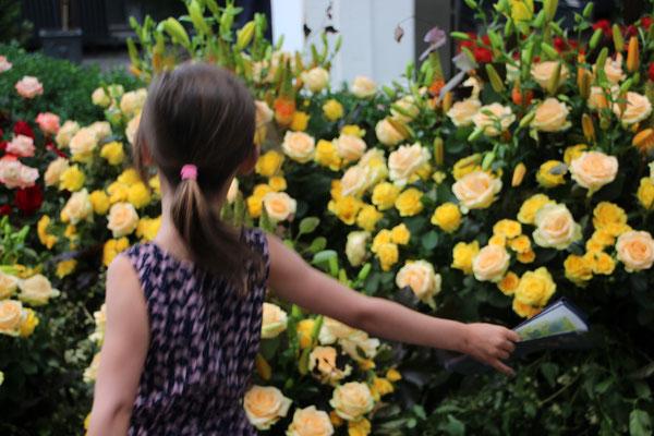 Unsere Große vor gelben Rosen im Palmengarten Frankfurt
