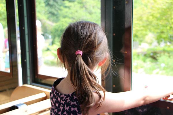 Unsere Große schaut aus dem Fenster des Palmenexpress im Palmengarten Frankfurt