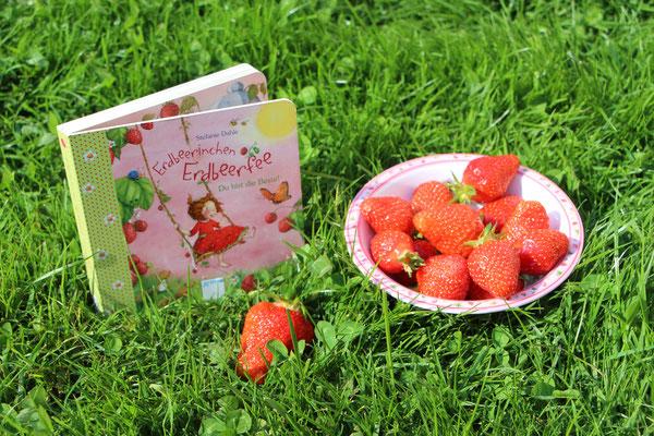 """Das Buch """"Erdbeerinchen Erdbeerfee - Du bist die Beste!"""" mit einer Schale voll Erdbeeren"""