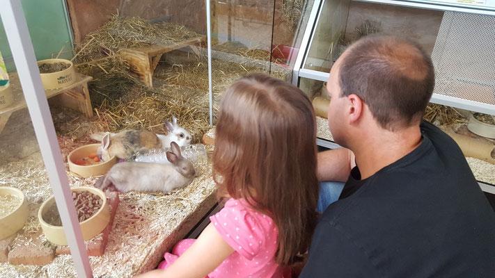 Unsere Kleine und Stefan bei den Kaninchen im Dehner-Gartencenter