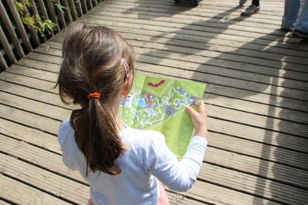 Die Kleine läuft mit einem Stadtplan durch den Frankfurter Zoo