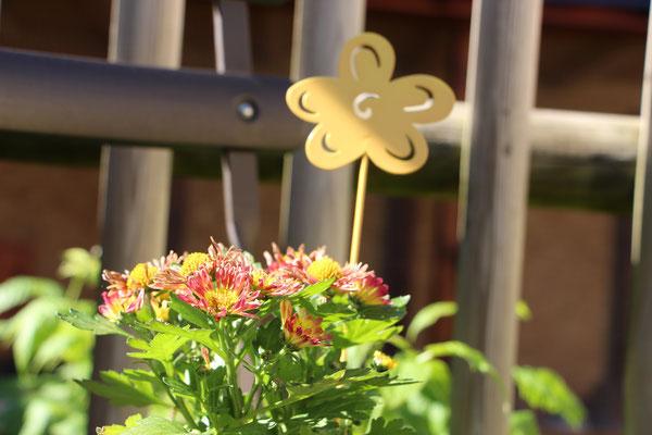 Blume im Metalleimer mit Blumensticker
