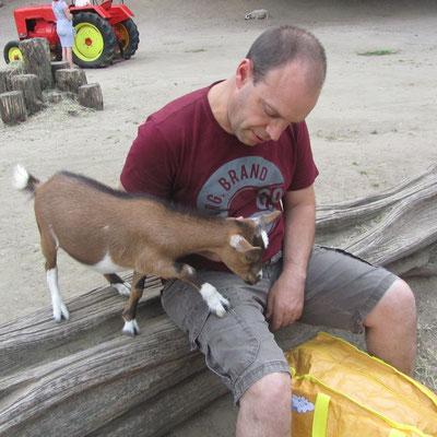 Eine Ziege steigt Stefan auf den Schoss im Streichelzoo Centerparc Erperheide