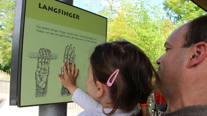 Entdeckerstationen im Zoo Frankfurt