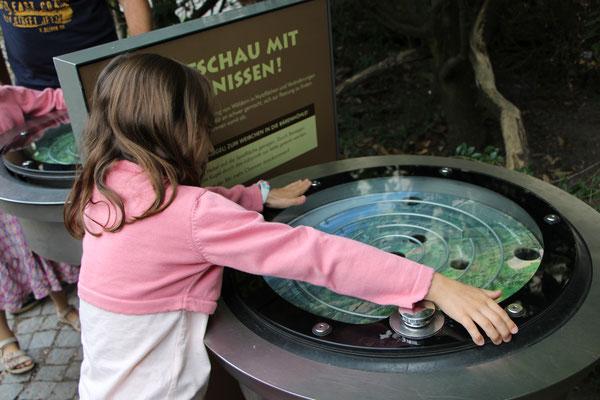 Unsere Große an einem Kugellabyrinth im Zoo Frankfurt