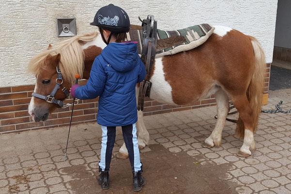 Unsere Große führt ihr Pony beim Pony-Club auf dem Hessenwaldhof