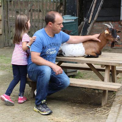 Unsere Kleine und Stefan bei den Ziegen im Streichelzoo Centerparc Erperheide
