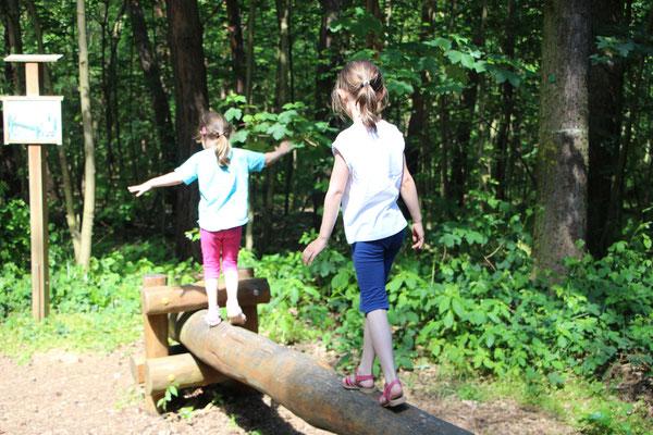 Unsere Mädels balancieren auf einem Baumstamm am Braunshardter Tännchen
