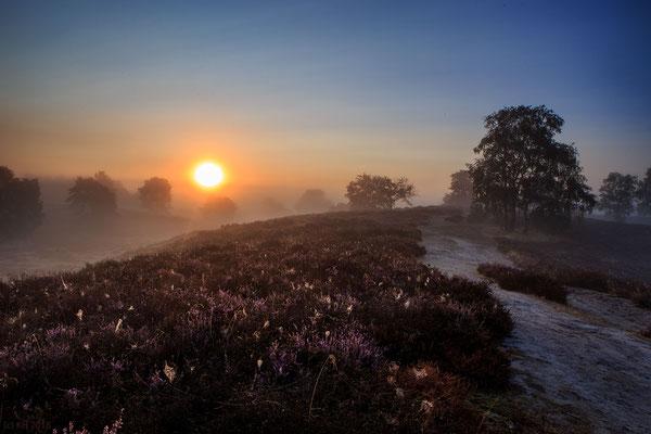Bild 10 - Herbstmorgen
