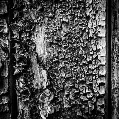 Bild 11 - Holzschuppen