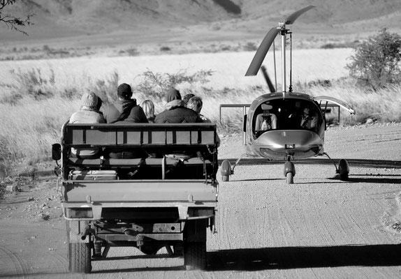 Bild 8 - Auf Safari