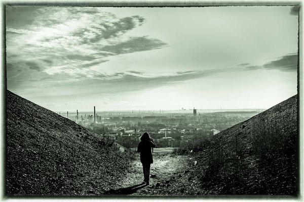 Bild 5 - Der Weg