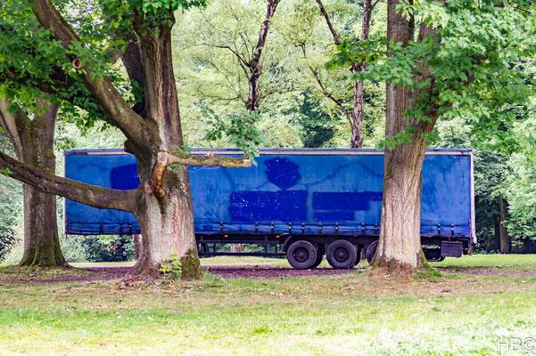 Bild 3 - Blau im Park