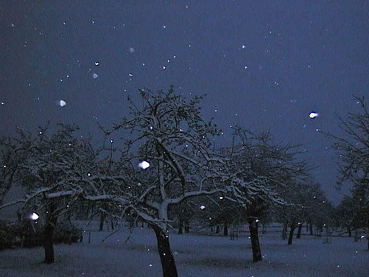 Bild 9 - Möchtest du dass Winter ist-