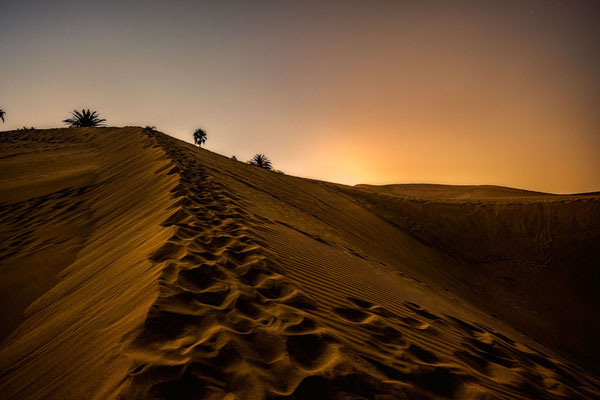 Bild 7 - Wüste
