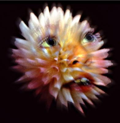 Bild 11: Blumenkind