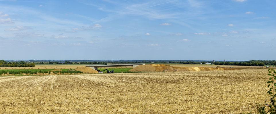 Bild 10: Noch alleine im Feld