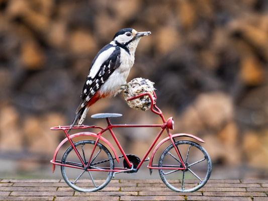 Bild 6: Klimaschutz - Kurzstrecke mit dem Fahrrad