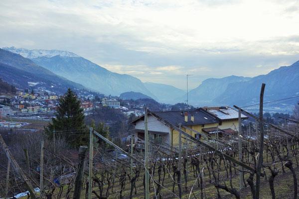 nach Trento noch ein kurzer aber heftiger Anstieg