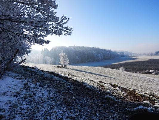 Frost auf unserem Hof