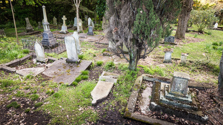 Auckland - Antico cimitero in città - New Zealand - Nuova Zelanda