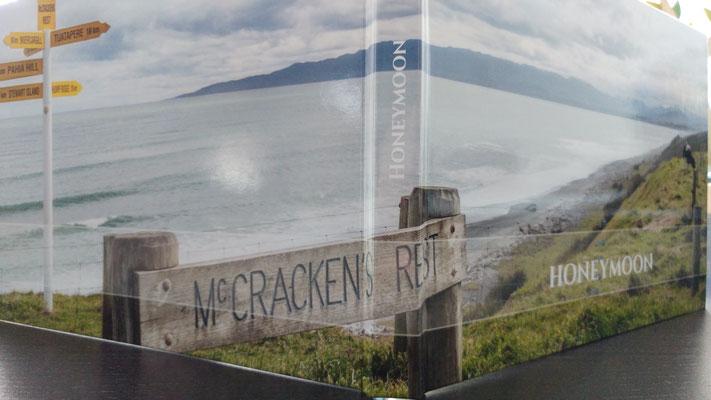 il libro aperto in cui si vede l'immagine di copertina estesa sia sulla 1a di copertina, sia sulla 4a, sia sulla spalla