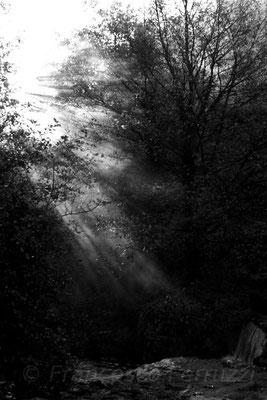 Lo spazio della luce