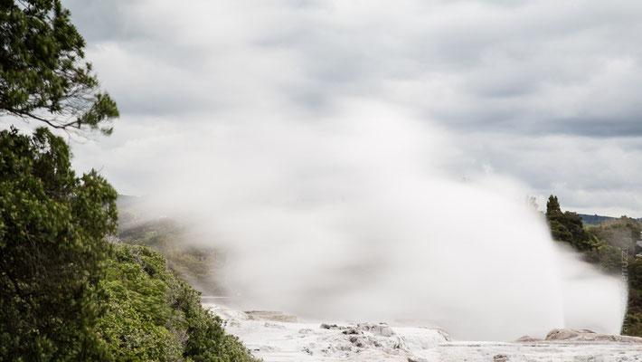 I geyser di Rotorua, visibili attraverso l'accesso da due villaggi Maori della città