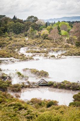 Pozze termali all'interno di un villaggio Maori a Rotorua - New Zealand - Nuova Zelanda
