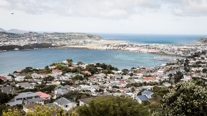 Panorama di Wellington - New Zealand - Nuova Zelanda
