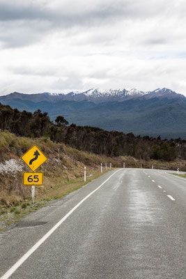 Fiordland - New Zealand - Nuova Zelanda