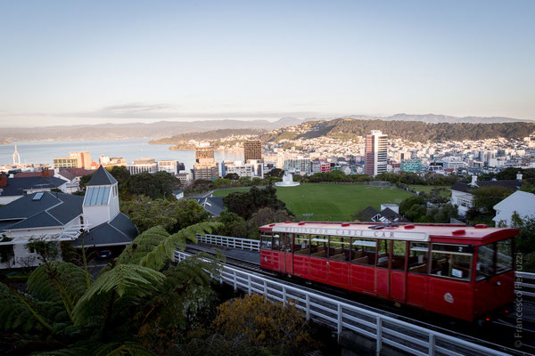 Wellington - New Zealand - Nuova Zelanda