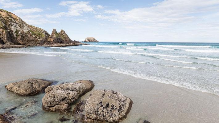 Wickliffe Bay - Otago Peninsula - New Zealand - Nuova Zelanda