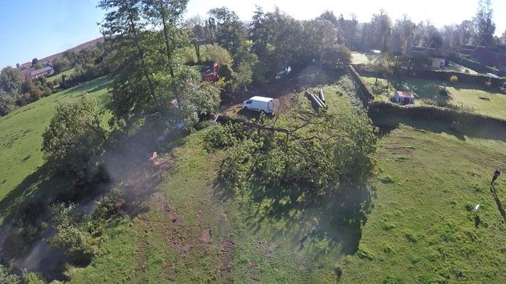 Nettoyage forestier