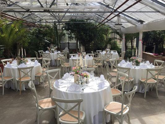 Hochzeitscatering im Gewächshaus bei München Taufkirchen