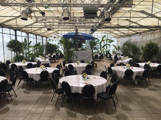 Partyservice für Hochzeit im Palmenhaus München