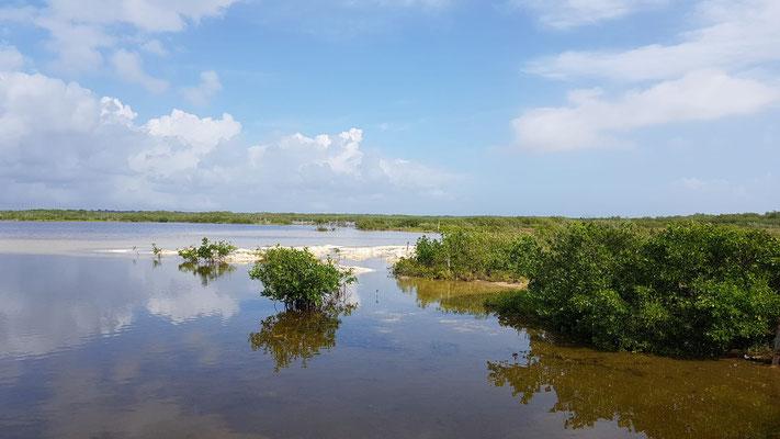 Punta Sur Nationalpark Cozumel
